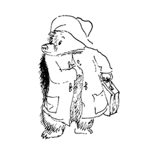 Paddington 2 pocket