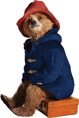 Paddington sitting